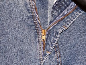 Yeah, my zipper is down, but why are you looking at it? (image via wikimedia)